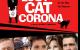 Lost-Cat-Corona